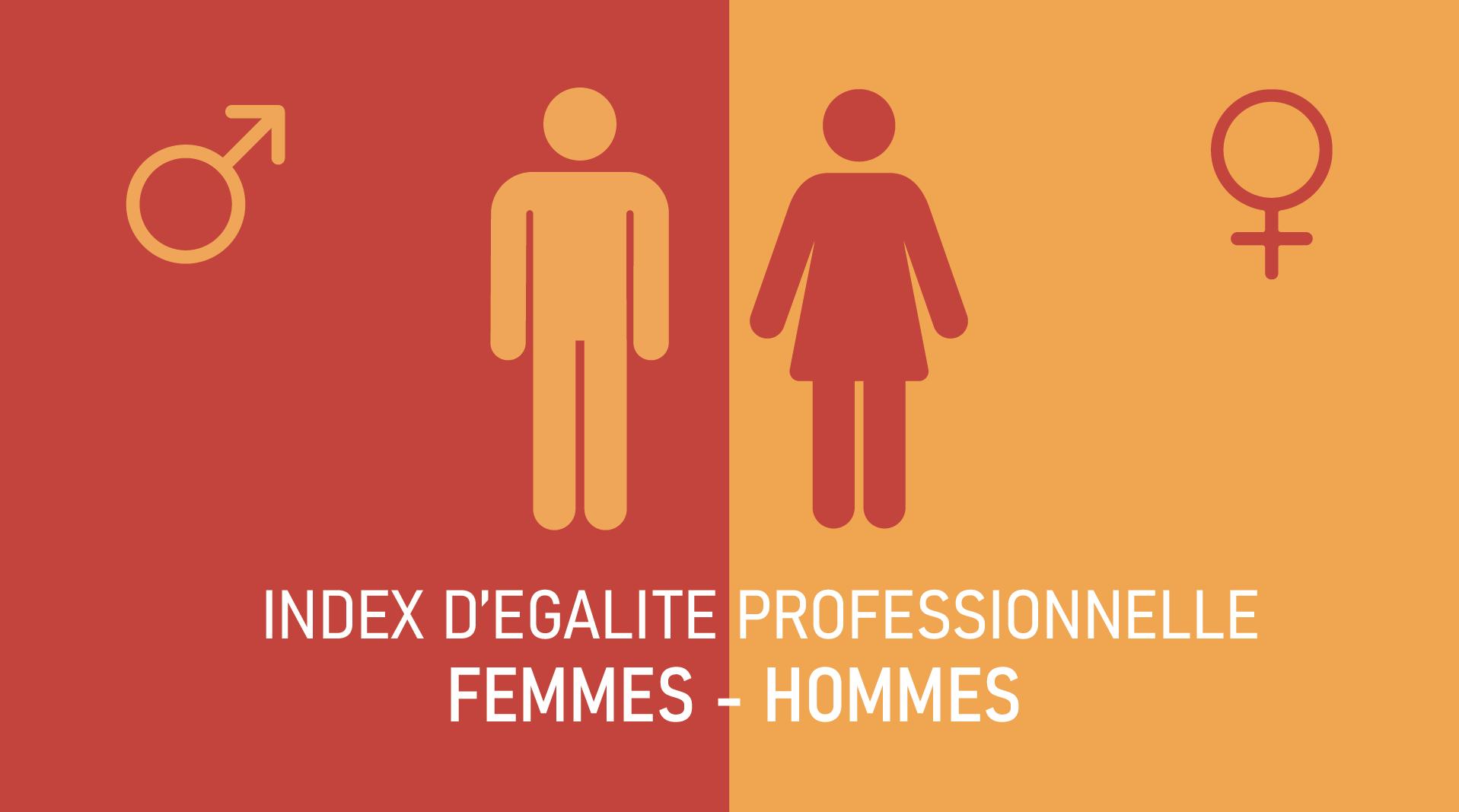 Index Egalité professionnelle